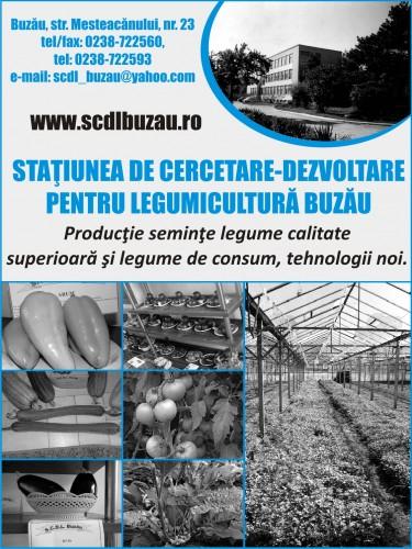 oferta seminte si rasaduri 2016 a scdl Buzau