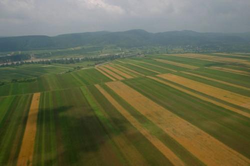 terenuri agricole investitori straini