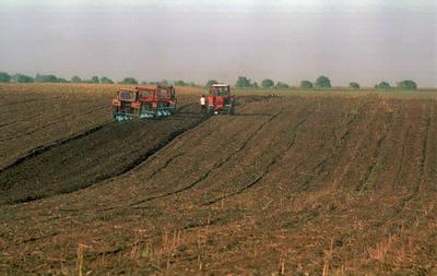 terenuri agricole de vanzare